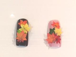 1級紅葉の葉っぱを3Dアート